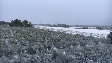 castellaneta-campagne-sotto-la-neve